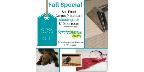 Fall Special - 60% off Soil Protector: $10 per room, Columbia, Missouri
