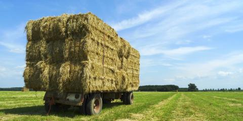 How to Choose the Best Hay Mower for Your Farm, Harris, North Carolina