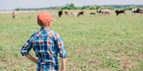 3 Tips for Prepare Your Farm for Winter, Harris, North Carolina