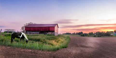 4 Answers to Your Most Common Farm Insurance Questions, Spearman, Texas