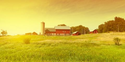 How Do You Know if You Need Farm Insurance?, Coleman, Wisconsin