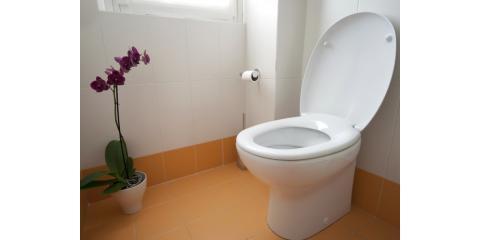 Call Fast Rooter Plumbing for Expert Leaky Toilet Repairs in Honolulu, Honolulu, Hawaii