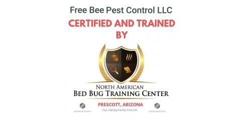 3 Tips for Hiring a Bed Bug Exterminator, Englewood, Ohio