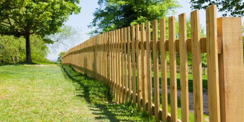 3 Factors to Consider When Installing a Fence Near Trees, Statesboro, Georgia
