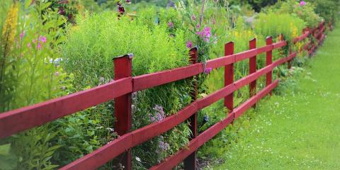 Do You Need Fence Repair Or Replacement?, Northeast Travis, Texas