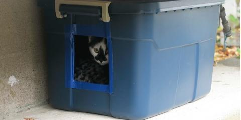 Donate your used rubbermaid containers and keep aferal kitty warm this winter!, Stratford, Connecticut