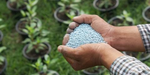 3 Tips for Choosing the Best Fertilizer for Your Lawn & Garden, Foristell, Missouri