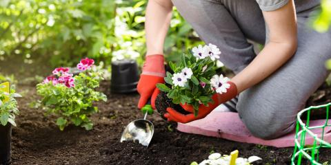 5 Essential Gardening Supplies for the Beginner, Robertsdale, Alabama