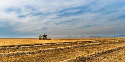 5 Reasons You Need to Buy Farm Insurance, Beatrice, Nebraska