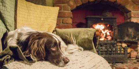 3 Tips to Prevent Pet-Related Fires, Tucker, Georgia