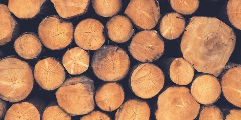 St. Louis' Firewood Delivery Pros Share 3 Tips for Getting Top-Quality Wood, Perryville, Missouri
