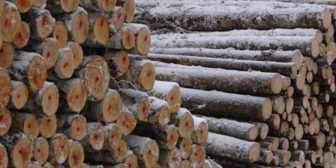 Tips For Firewood Storage This Winter From Ross Tree and Contracting Inc., Sudbury, Massachusetts