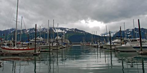 A Guide to Boat Licensing & Wildlife Protection in Alaska, Anchorage, Alaska