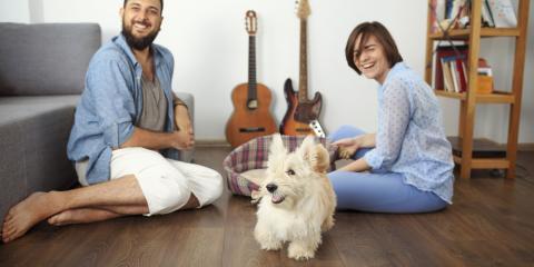 Mohawk Flooring Anniversary Sale: Pet-Proof Your Home!, Holmen, Wisconsin