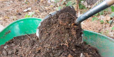 What Compost Is & How It Benefits Soil, Brandon, Florida