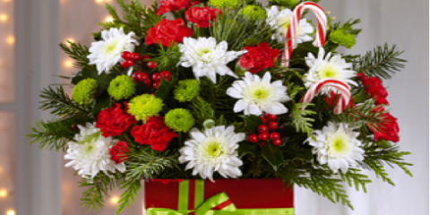 Get Custom-Designed Flower Arrangements for the Holidays, Hamden, Connecticut