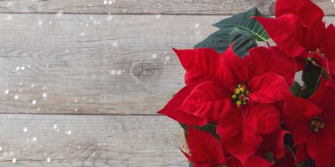 3 Ways to Incorporate the Holidays Into Your Floral Arrangements , Altadena, California