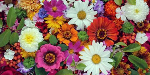 4 Special Occasions to Send Flowers, Penfield, New York