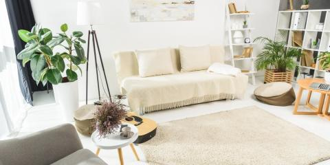 4 FAQ About Purchasing Houseplants, Manhattan, New York