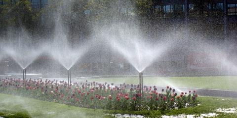 3 Reasons an Irrigation System Is Worth The Price, Elko, Nevada