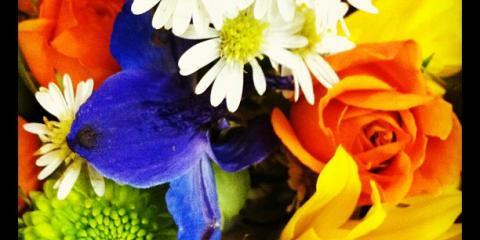 University of Kentucky Fans Can Show Support With UK-Inspired Flower Arrangements , Lexington-Fayette, Kentucky