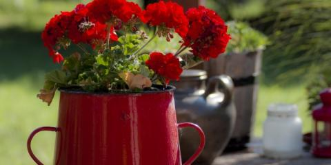 Fabulous Fresh Flower Arrangements For The Home From Kreations by Karen, Lexington-Fayette, Kentucky