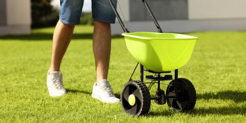 Your Guide to Buying Lawn Fertilizers, Foristell, Missouri