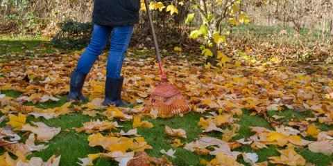 4 Essential Autumn Lawn Care Tips, Foristell, Missouri
