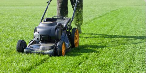 4 Lawn Services You Need in the Fall, Fort Worth, Texas