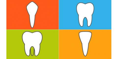 What Are The Different Types of Teeth?, Manhattan, New York