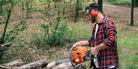 A Guide to Buying Your First Chainsaw, Franklinville, New York