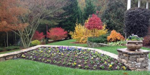 3 Low-Maintenance Flowers for Your Garden, Greensboro, North Carolina
