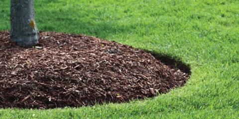 3 Benefits of Laying Mulch in the Fall, Missouri, Missouri