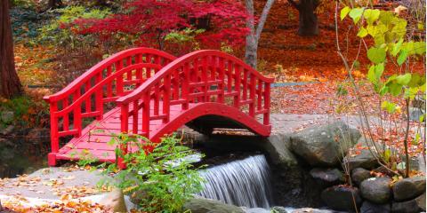 3 Fall Garden & Pond Maintenance Tips, Columbia, Missouri