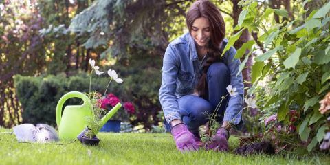 3 Benefits of Using Topsoil, Nicholasville, Kentucky