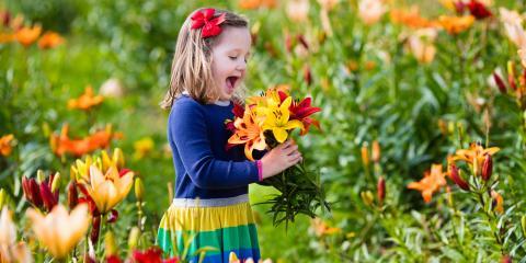 5 Low-Maintenance Flowers to Include in Your Garden, Honolulu, Hawaii