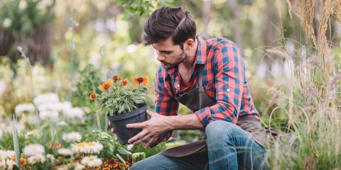 4 Tips for Keeping Your Garden Healthy, Woodbury Center, Connecticut