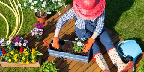 3 Tips to Become a Better Gardener, Port Jervis, New York
