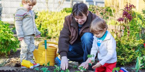 When to Plant Vegetables in the Garden, Bethel, Ohio