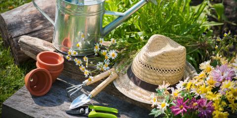 3 Essential Summer Garden Tools, Lexington-Fayette, Kentucky