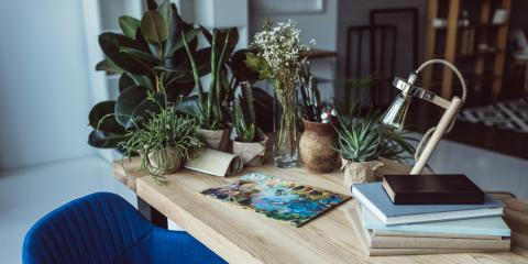 3 Plants to Liven Up Your Office Desk, Hilo, Hawaii