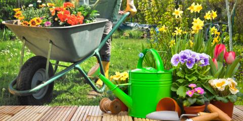 5 Basic Gardening Tools for Beginners, Hilo, Hawaii