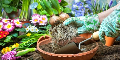 4 Tasks to Complete This Fall to Save Money on Gardening, Colerain, Ohio