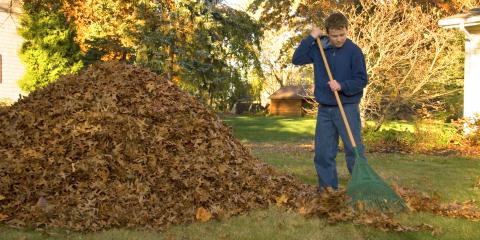 Top 5 Gardening Supplies for Fall, Bethel, Ohio