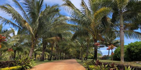 Kauai Landscape Architect Explains Gentleman's Estates, Eleele-Kalaheo, Hawaii