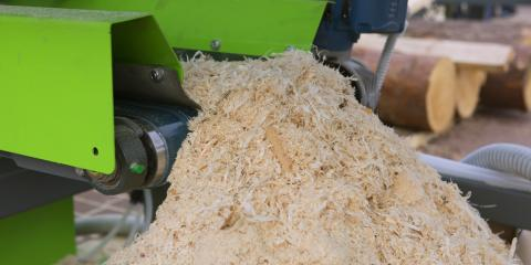 3 Reasons to Use Wood Shavings as Animal Bedding, Hallandale Beach, Florida