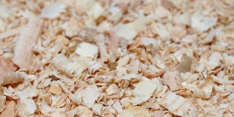 3 Benefits of Using Wood Shavings for Animal Bedding, Hallandale Beach, Florida