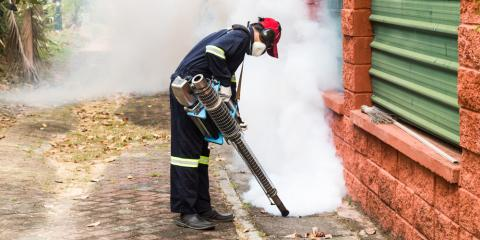 4 Benefits of Professional Mosquito Treatments, 2, Maryland