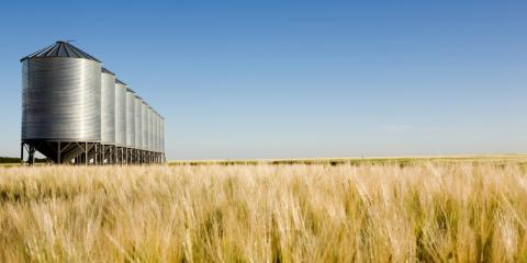 What Are the Differences Between Grain Bins & Silos?, Cairo, Georgia