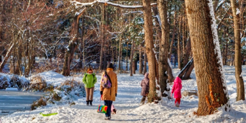 Rochesteru0027s Senior Living Community Staff Shares 3 Tips To Prevent Falls  This Winter   GrandeVille Senior Living Community   Greece   NearSay